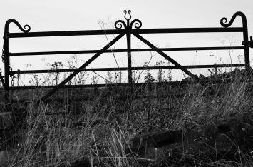 Mick's gate