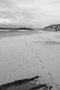 My footsteps looking back north across Machir Bay